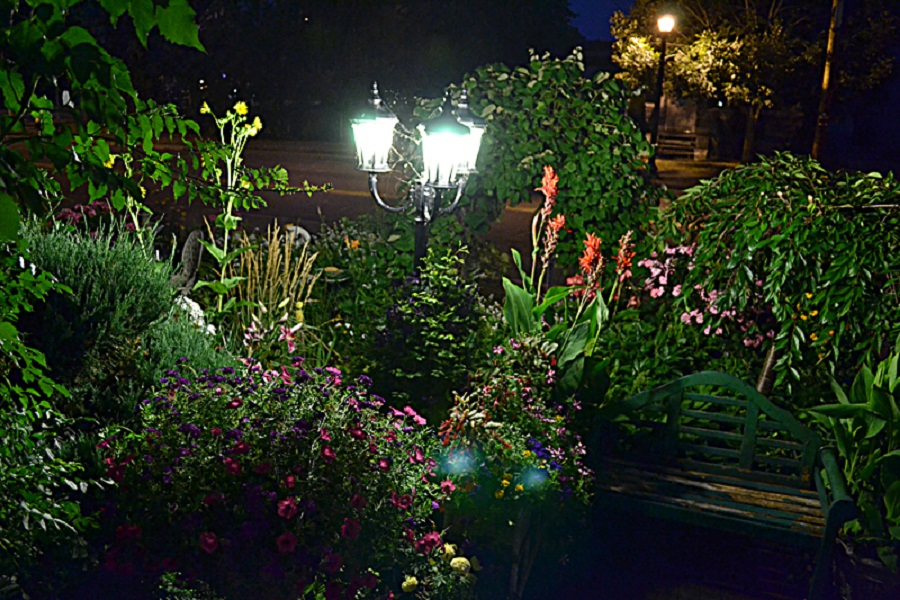 How To Create Your Own Night Garden Top Of Blogs